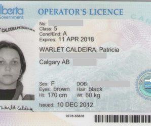 Водительские права в Альберте